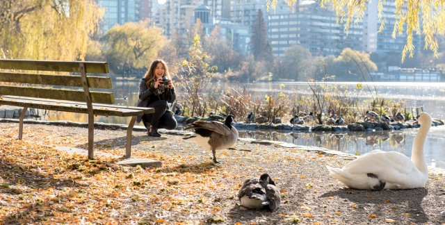 Aventurez-vous au parc Stanley: 10 façons de jouer dans le plus grand parc de Vancouver