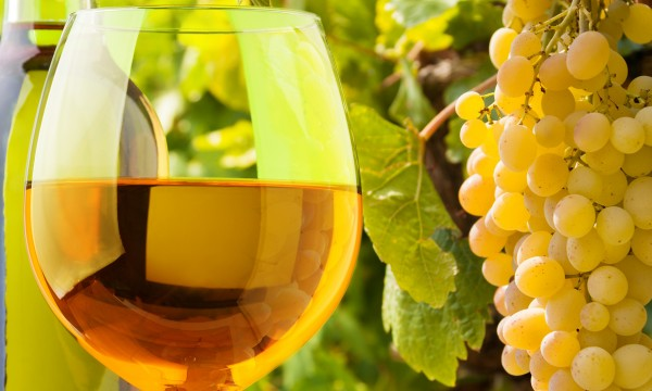 5 trucs délicieux pour bien déguster votre vin