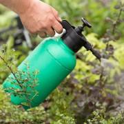 Guide d'utilisation des herbicides sur les mauvaises herbes