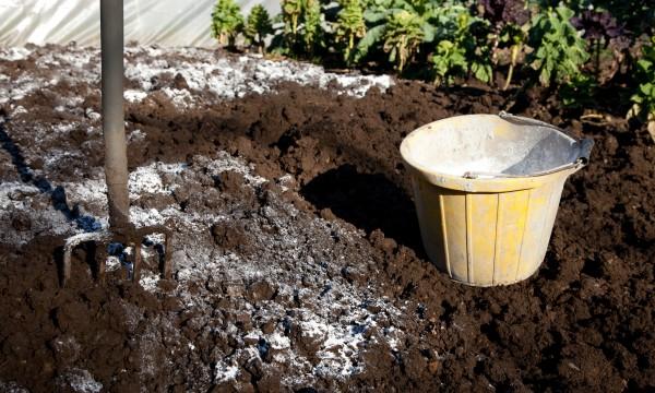 guide d 39 utilisation de la chaux dans votre jardin trucs pratiques. Black Bedroom Furniture Sets. Home Design Ideas