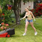 Conseils d'experts pour une belle pelouse