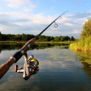 Guide d'achat d'une canne à pêche