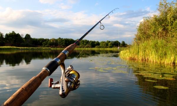 vente de canne à pêche