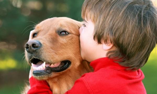 Mauvaise haleine de mon chien