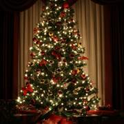 Comment conserver la fraîcheur de votre sapin de Noël?