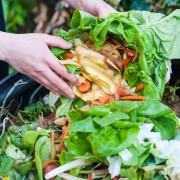 Conseils sur le compostage pour les débutants