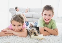 5 conseils de coparentalité pour parents divorcés