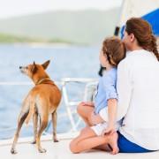 6 conseils pour emmener le meilleur ami de l'homme passer une journée sur l'eau