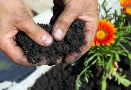 4 types d'engrais biologiques et leur utilisation