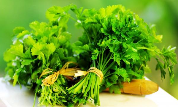 7 infos utiles à savoir pour cultiver du persil
