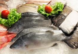 Parti pêcher : comment préparer du poisson comme un pro