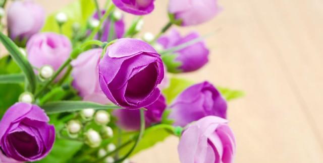Anatomie des fleurs de soie