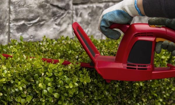 Ce qu'il faut savoir pour garder sa pelouse verte et saine