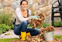 4 conseils pour garder votre jardin en fleur