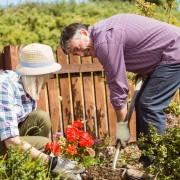 10 façons de faire un jardin dans votre petit espace