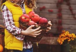 7 idées créatives et délicieuses à préparer avec des pommes