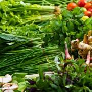 Conseils pour entretenirun jardin d'herbes fraîches