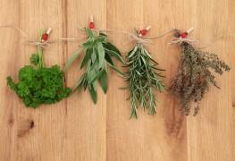 5 méthodes simples pour le séchage des herbes