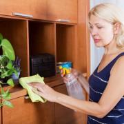 5 nettoyants à faire soi-mêmepour rafraîchir votre maison
