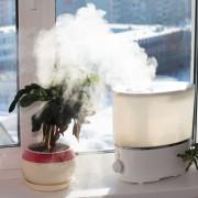 De quelle façon et à quel moment nettoyer votre humidificateur