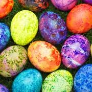 5 façons de passer le week-end de Pâques à Calgary