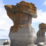 Les parcs nationaux du Canada
