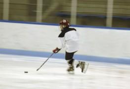 Importance de l'ajustement des patins à glace