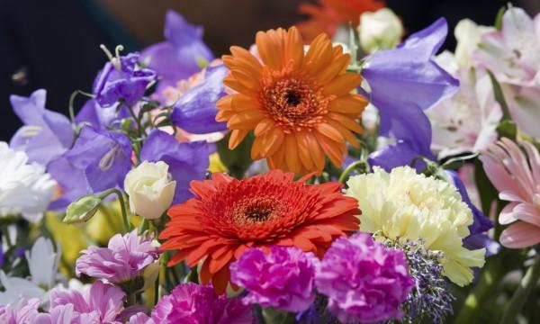Le gerbera dans votre bouquet de mariée