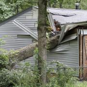 Êtes-vous assuré en cas decatastrophes naturelles?