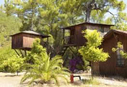 pourquoi-vous-devriez-essayer-un-hotel-dans-les-arbres