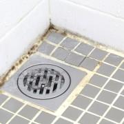 3 moyens efficaces d'éliminer la moisissure de la salle de bain