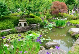 Comment concevoir votre propre jardin japonais