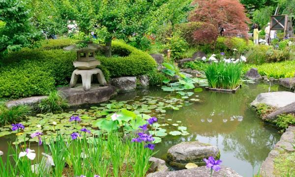 comment concevoir votre propre jardin japonais trucs pratiques. Black Bedroom Furniture Sets. Home Design Ideas