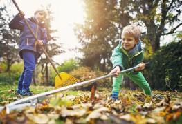 12 façons de préparer votre jardin pour l'hiver