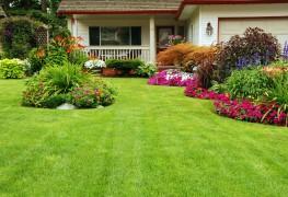 Entretien de la pelouse toute l'année
