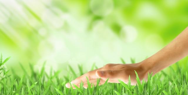 Donnez un nouveau souffle à votre pelouse rapidement