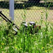Tondez-vous correctement votre pelouse?