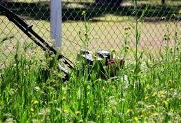 Tondez-vous correctement votre pelouse ?