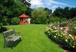 Comment identifier le pH du sol pour une pelouse saine