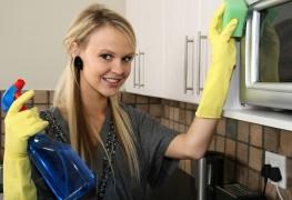 Nettoyer votre four au naturel