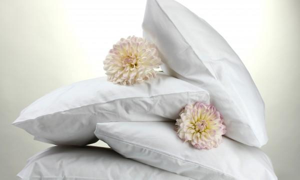 Guide simple de nettoyage des oreillers