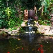 Égayez votre jardin avec une fontaine et un petit bassin