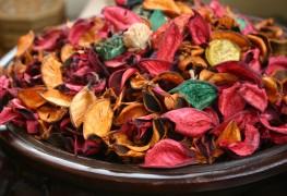 5 désodorisants naturels pour la maison