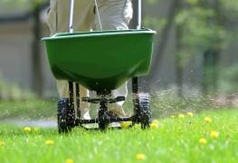 4 conseils de fertilisation pour une belle pelouse