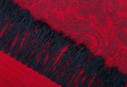 Quelques conseils faciles pour nettoyer régulièrement vos tapis