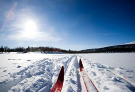 Conseils pour l'achat de skis de fond