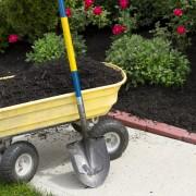 Guide de paillage des jardins pour leur protectionl'hiver