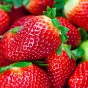Conseils pour choisir et préparer les fruits et les légumespour le séchage