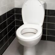 Guide de nettoyage et d'entretien de la toilette