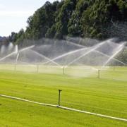 Arrosez-vous correctement votre pelouse?
